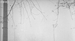 Warszawa w mgle i deszczu 40 i 75 lat temu (NAC)
