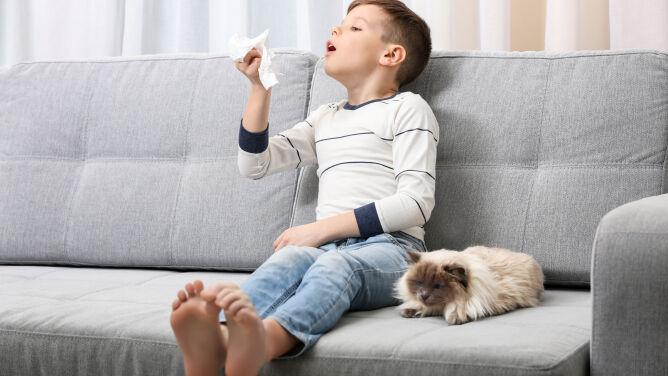 Skuteczna metoda walki z alergią. Eksperci: daje szansę na całkowite wyleczenie