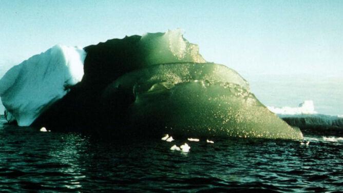 """Tajemnica zielonych lodowców. Mogą """"dostarczyć żelazo daleko na ocean"""""""