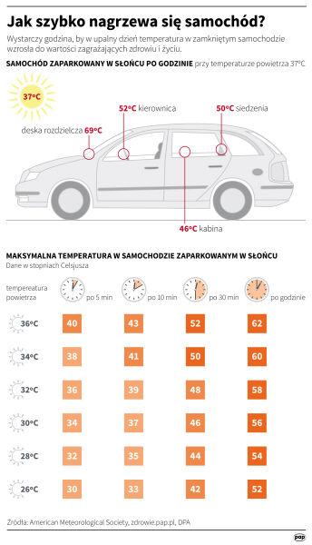 Jak szybko nagrzewa się samochód? (Maciej Zieliński/PAP/IMGW)